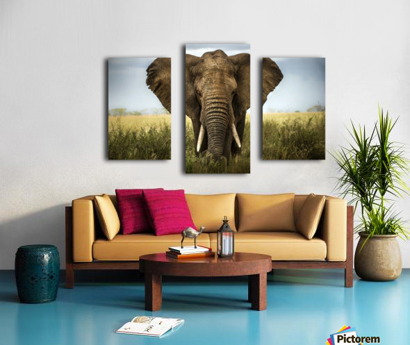 Encounters in Serengeti Canvas print