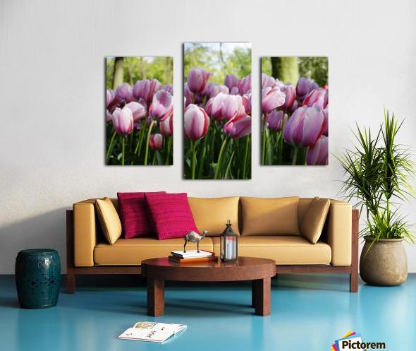 Pink & White Canvas print
