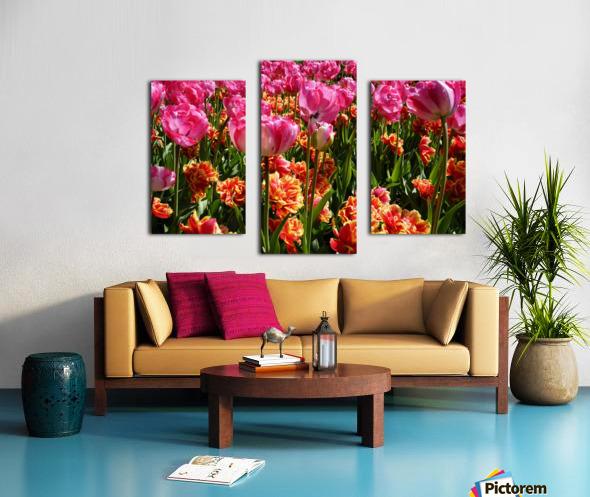 Pink & Orange Canvas print