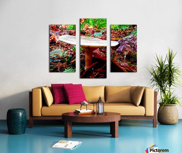 Tiny World 4 of 8 - Mushrooms and Fungi Canvas print