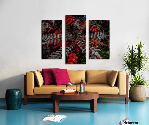Holly Explosion Canvas print