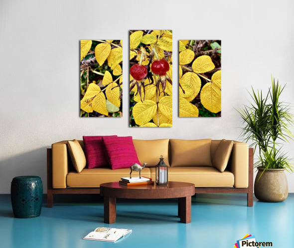 Two Red Berries Canvas print