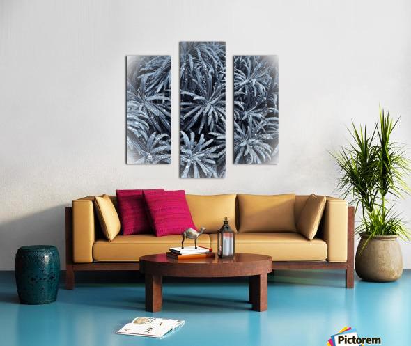 E2D99D0A F40D 4096 A2D3 8F4DDE8C0F33 Canvas print