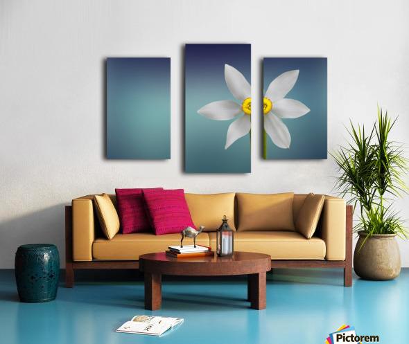 Flower of Paradise by Bess Hamiti  Canvas print