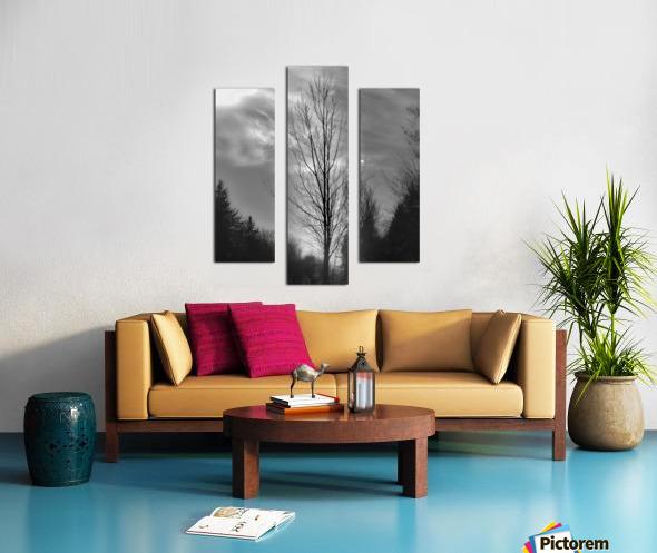 Assombri Canvas print