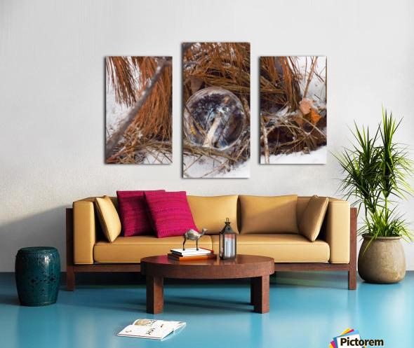 Refuge Canvas print