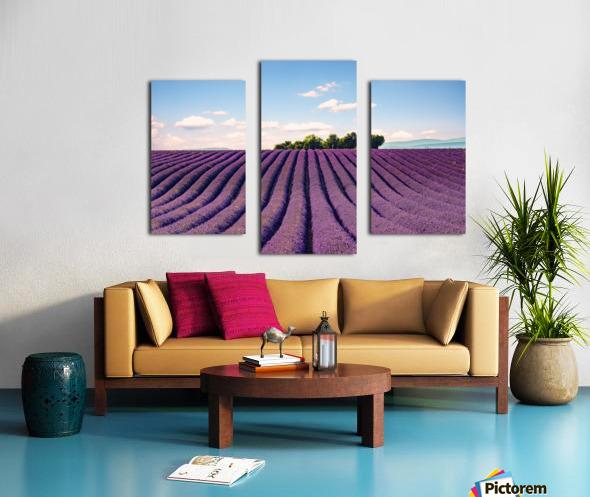 The Valensole plateau Canvas print