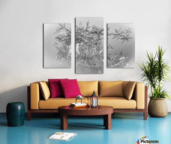 Pointe Canvas print