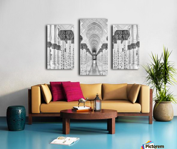Kind of Symmetry Canvas print