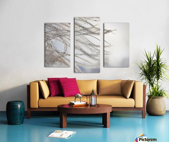 Plumeau Canvas print