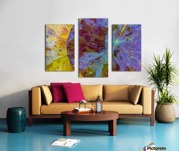 Colors Of Nature ap 2038 Canvas print