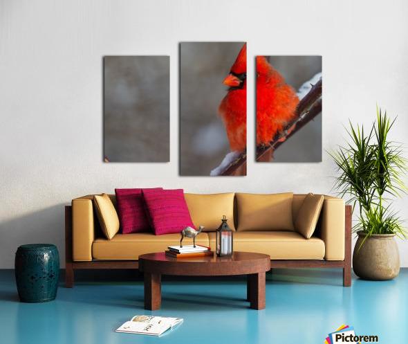 Cardinal ap 1866 Canvas print