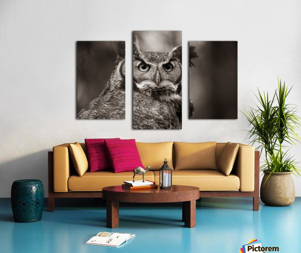 Great Horned Owl ap 2860 B&W Canvas print