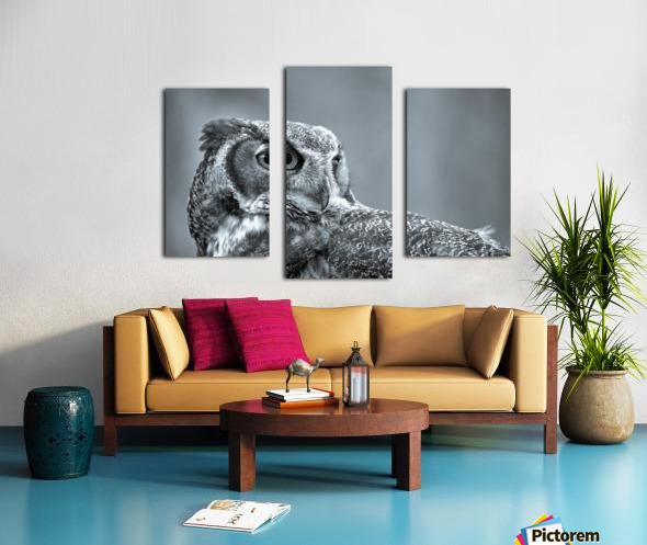 Great Horned Owl ap 2861 B&W Canvas print