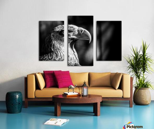 Eagle ap 2046 B&W Canvas print