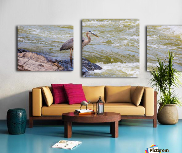 Great Blue Heron ap 2014 Impression sur toile