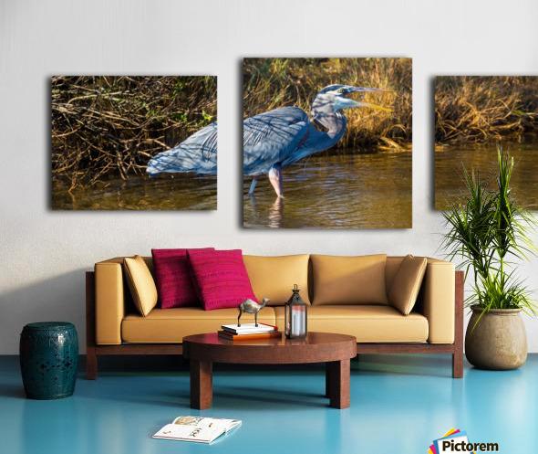 Great Blue Heron ap 2133 Canvas print