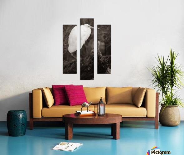 Great White Egret ap 1848 B&W Impression sur toile