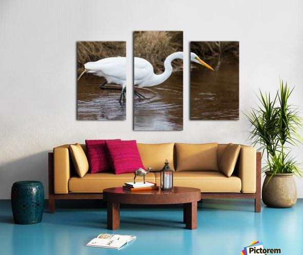 Great White Egret ap 2802 Impression sur toile