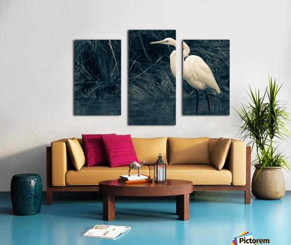 Great White Egret ap 1839 B&W Impression sur toile