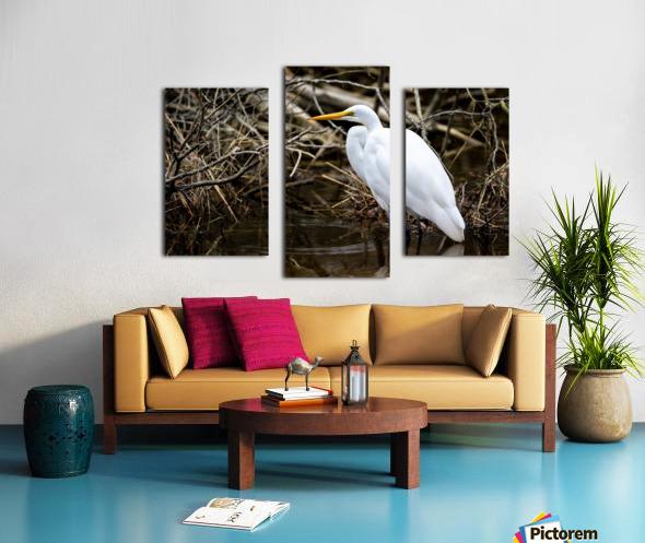 Great White Egret ap 2807 Impression sur toile