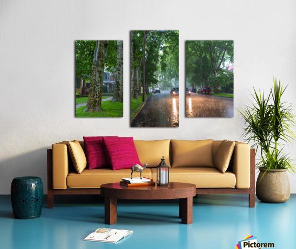Summer Rain ap 2892 Canvas print