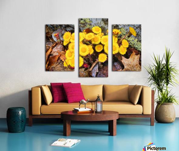Flowers ap 2222 Canvas print