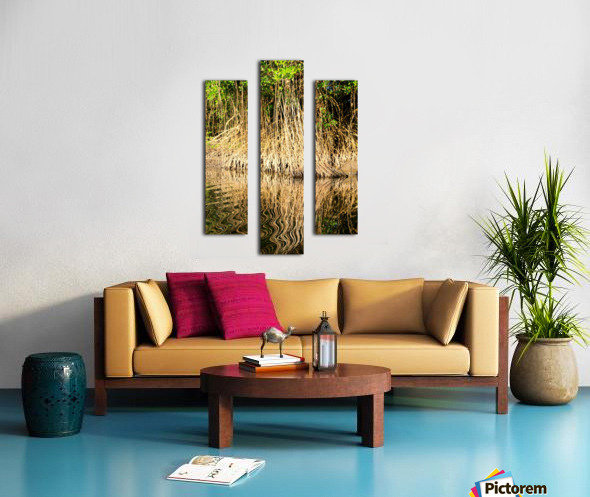 Mangrove roots Canvas print