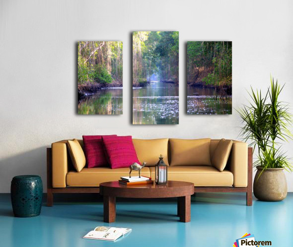 Caroni Swamp   Trinidad Canvas print
