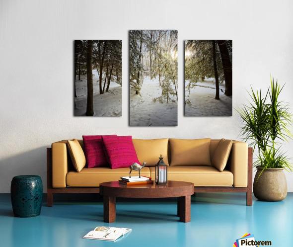 Sunlight ap 2731 Canvas print