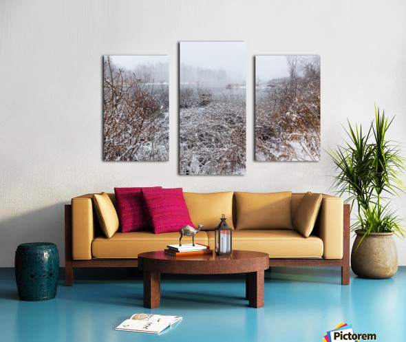 Winter ap 2708 Canvas print