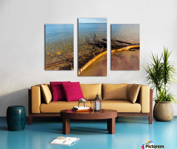 Driftwood ap 2481 Canvas print