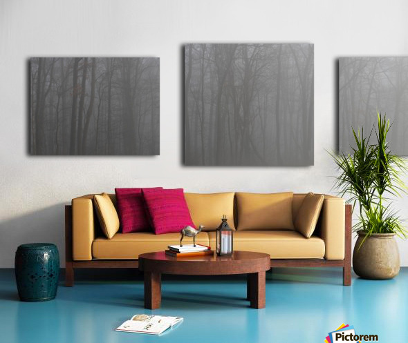 Treeline apmi 1546 Canvas print