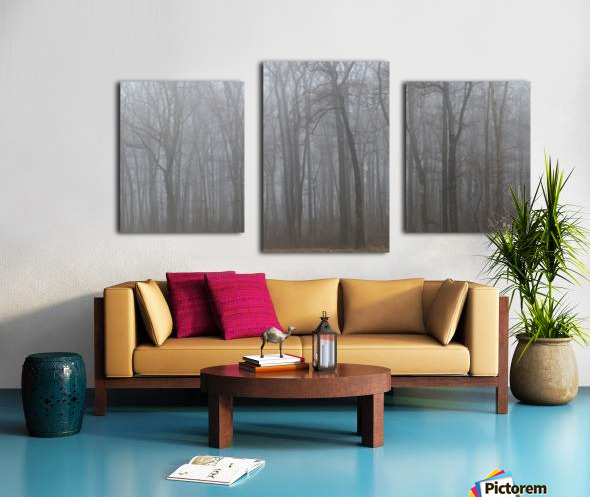 Treeline apmi 1547 Canvas print