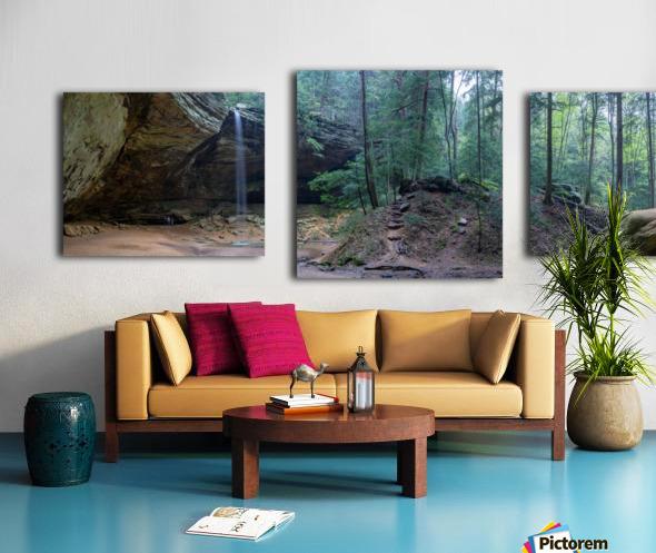Ash Cave apmi 1646 Canvas print