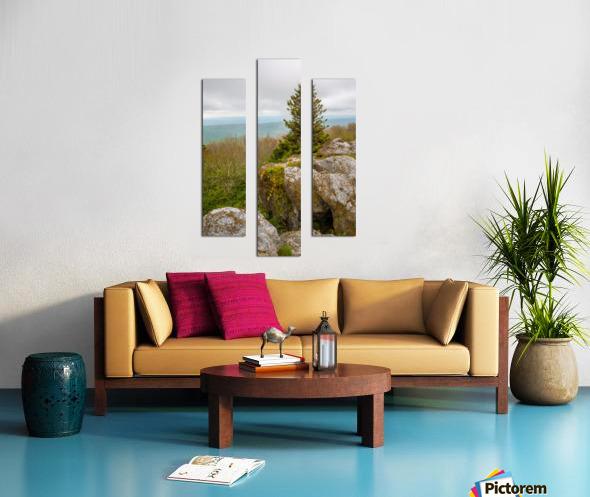 Hanging On ap 2943 Canvas print