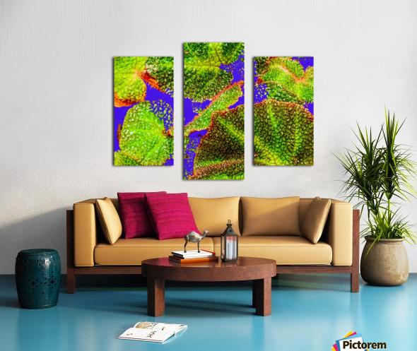 Tropical Colours Canvas print