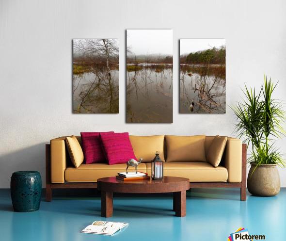 Beaver Pond ap 2357 Canvas print