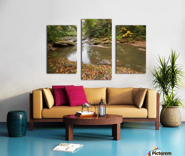 Fall Color ap 2453 Canvas print