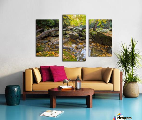 Reflections ap 2476 Canvas print