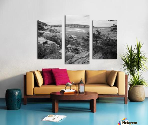 Acadia ap 2376 B&W Canvas print