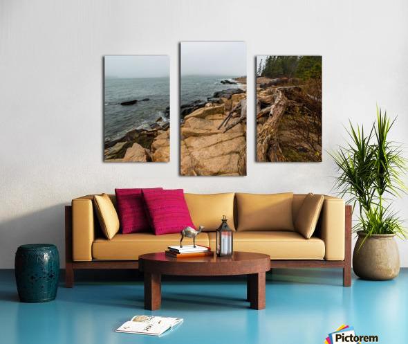 Driftwood ap 2257 Canvas print