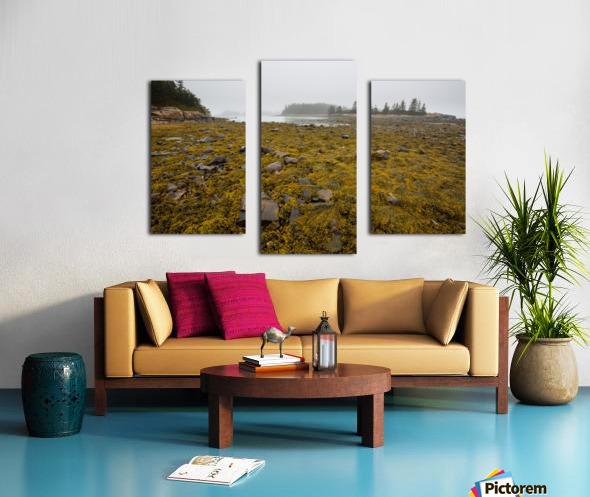 Low Tide ap 2271 Canvas print