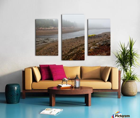 Low Tide ap 2296 Canvas print