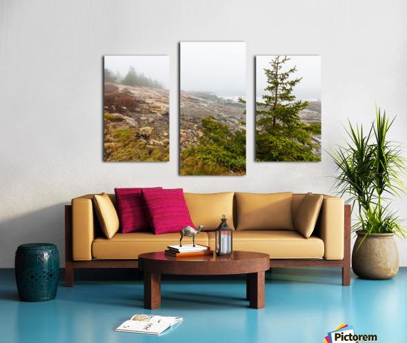 Lone Pine ap 2284 Canvas print