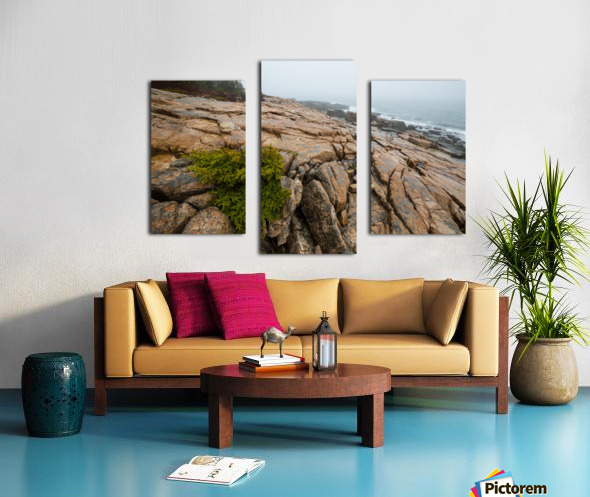 Lone Pine ap 2286 Canvas print
