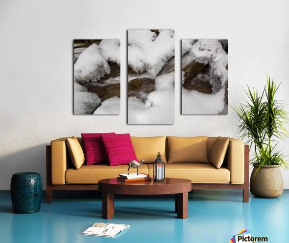Ice ap 2726 B&W Canvas print