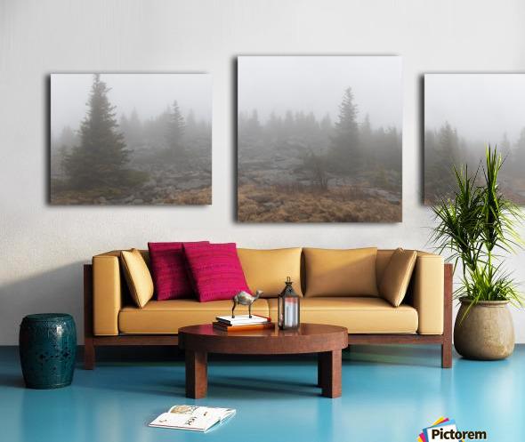 Pines apmi 1602 Canvas print