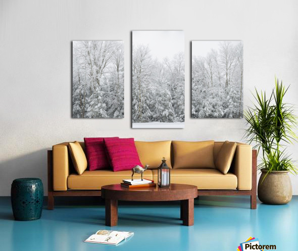 Treeline apmi 1573 Canvas print