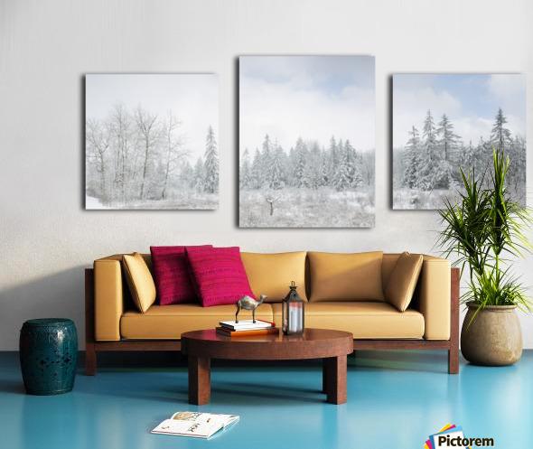 Treeline apmi 1588 Canvas print